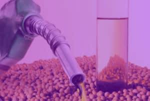 Levante Ideias - mistura biodiesel roxo