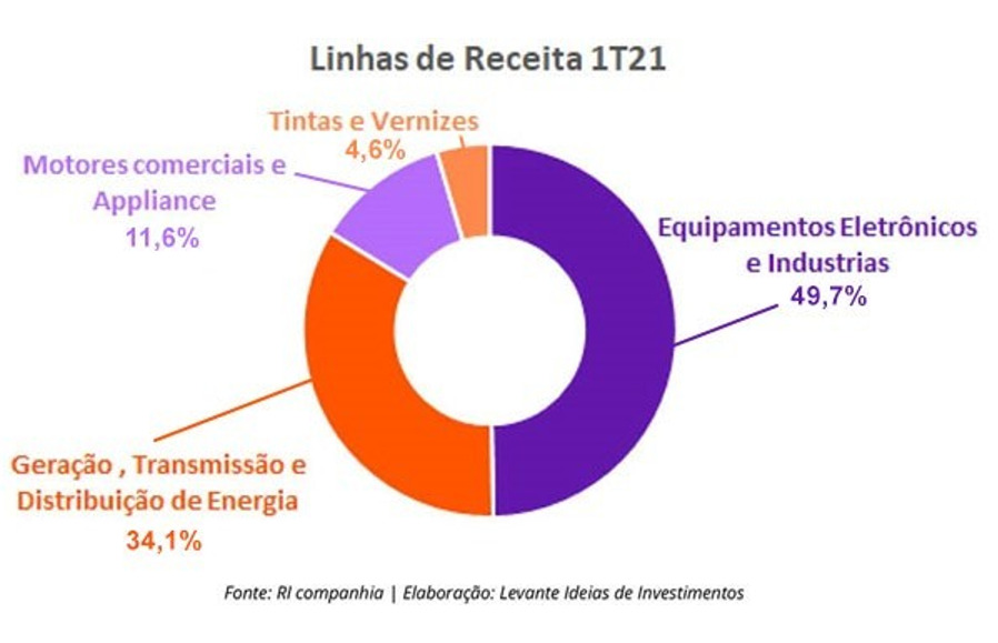 Report WEG - Levante Ideias