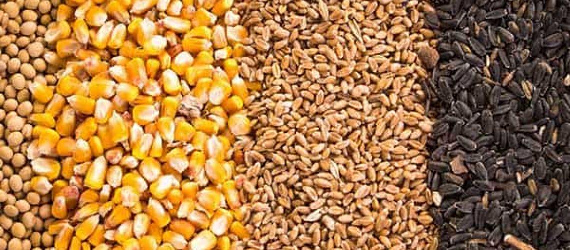 Levante Ideias - Comodities agropecuário