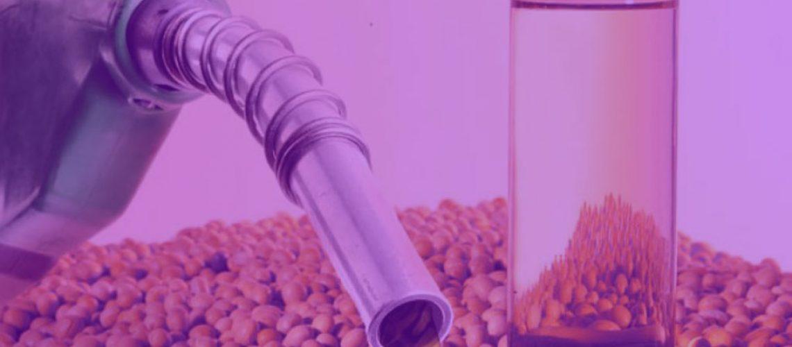 mistura-biodiesel-roxo